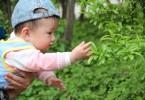赤ちゃんは植物を警戒する?