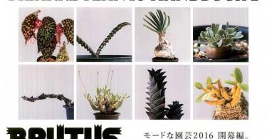 ブックレビュー『BRUTUS No. 821 まだまだ珍奇植物』