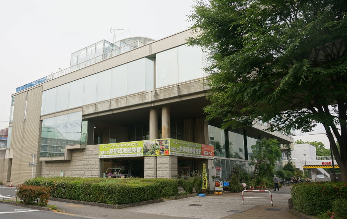 板橋 熱帯環境植物館