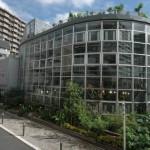 渋谷区ふれあい植物センターのイベント
