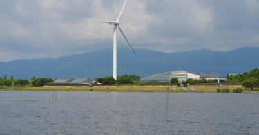 ハスが消えた琵琶湖