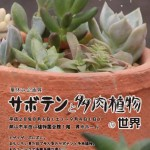 サボテン・多肉植物の世界