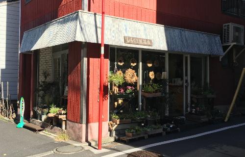 市谷柳町 しろくま生花店