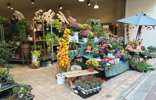 ガーデニア 丸井上野店