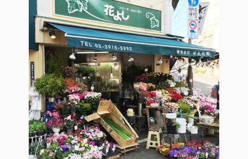 板橋 フローラ 花よし