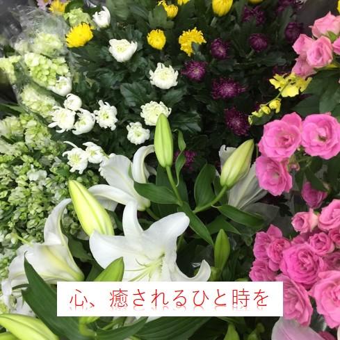 店内のお花