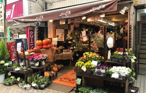 オランダ屋ブルーミスト 高円寺店