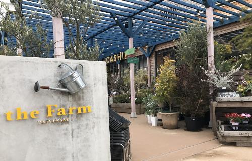 the Farm UNIVERSAL 千葉