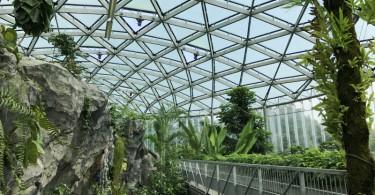 新宿御苑 温室