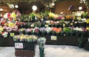 生花、切り花 フラワーマルシェ 新宿西口店