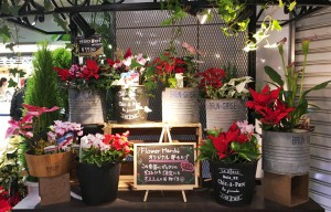 オリジナル寄せかご フラワーマルシェ 新宿西口店