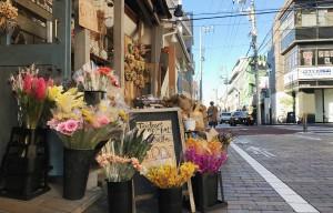 店頭 季節の花(2018年11月) ベオーネ 用賀