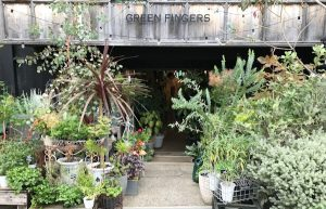 GREEN FINGERS 三軒茶屋