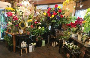 店内では主に生花・雑貨を、店頭には観葉植物や花苗を陳列