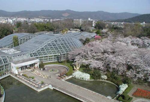 京都府立植物園のイベント