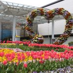 大阪市立 長居植物園のイベント