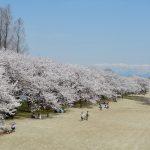 富山県中央植物園のイベント