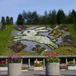 宇治市植物公園のイベント