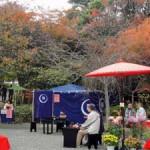 白野江植物公園「紅葉まつり」