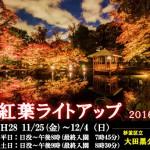 大田黒公園 2016紅葉