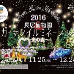 長居植物園 ガーデンイルミネーション2016 ~光の森~