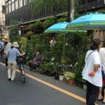 お富士さんの植木市 2016