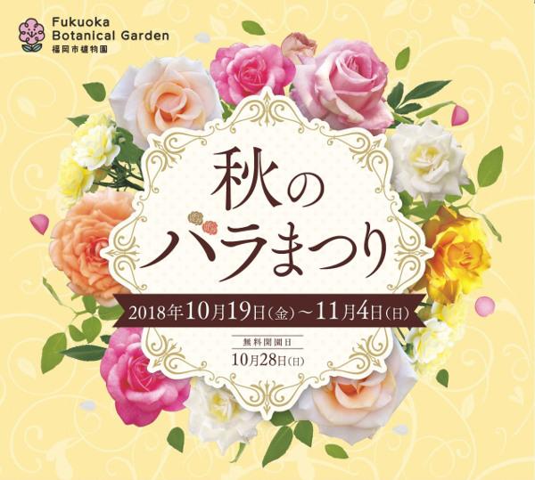 秋のバラまつり 福岡市植物園