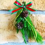 熱帯の植物体験イベント「クリスマス スワッグ作り」