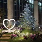 クリスマスフラワーショー2018 北欧のクリスマス