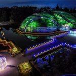 京都府立植物園 観覧温室の夜間開室とイルミネーション