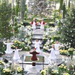 奇跡の星の植物館 クリスマスパーティー2018