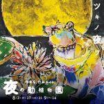 夜の動植物園 福岡市植物園
