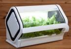 IoT水耕栽培キット「やさい物語」