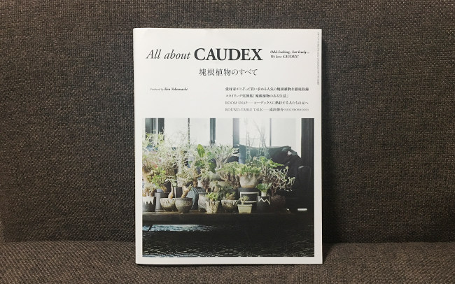All about CAUDEX