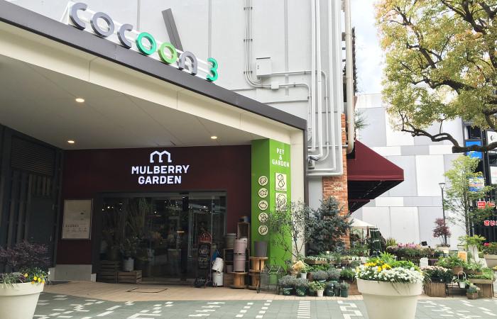 マルベリーガーデン コクーンシティ店 | さいたま新都心