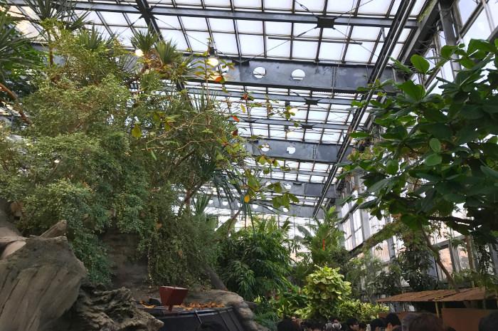上野動物園 両生爬虫類館