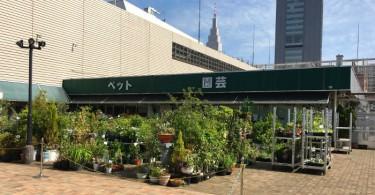 総合園芸 東洋園