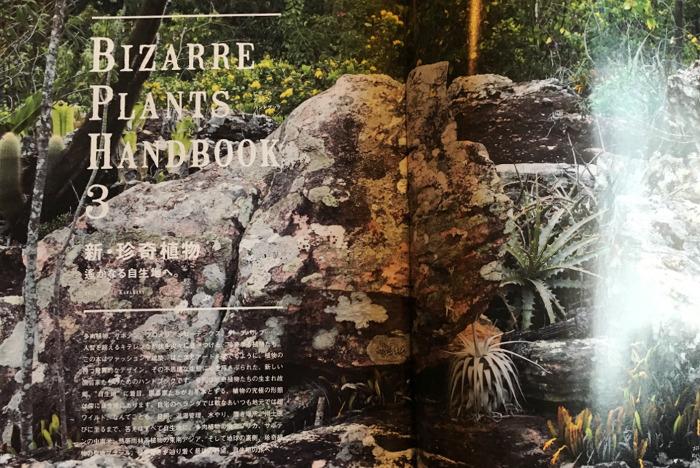 BRUTUS No. 872 BIZARRE PLANTS HANDBOOK 3 新・珍奇植物