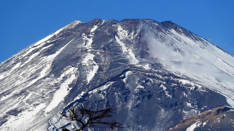 温暖化の影響?富士山頂の周辺で新たな植物の生育が確認される