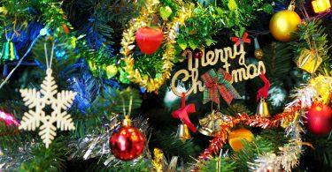 【2018年クリスマス特集】温室や植物園で開催されるイルミネーション・コンサートイベント情報