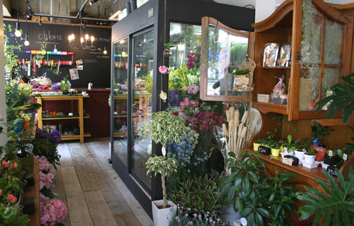 flower shop chloris