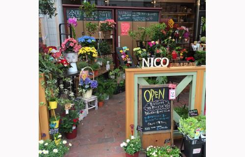 nico flower garden