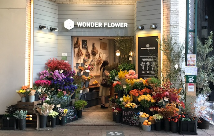 WONDER FLOWER ワンダーフラワー 自由が丘店