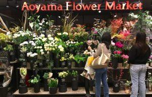 青山フラワーマーケット 横浜ジョイナス