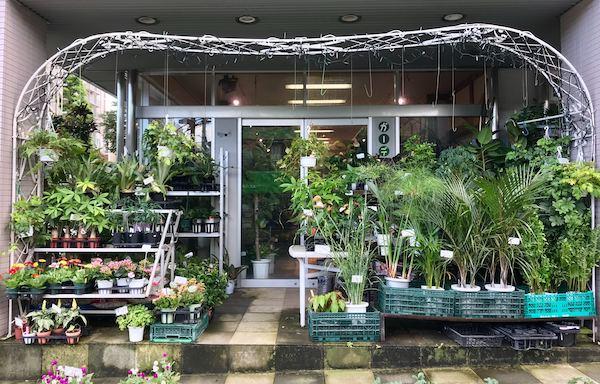 ガーデニングステージ 三軒茶屋 園芸店